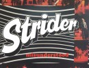 Strider – Misunderstood